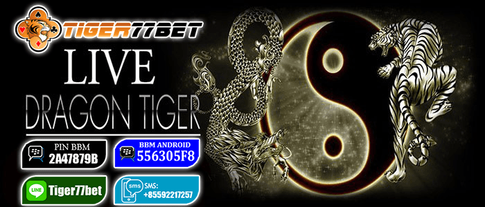 Trik Panduan Main Dragon Tiger (Leng-Ho) Agar Menang Besar