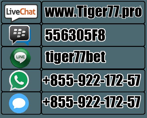 contact-tiger77