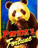 Panda's-Fortune