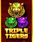 Triple-Tigers